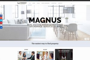Magnus REMBS Website mockup