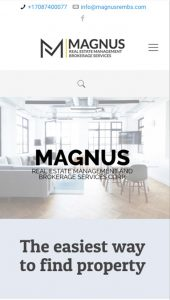 Magnus REMBS mobile Website mockup